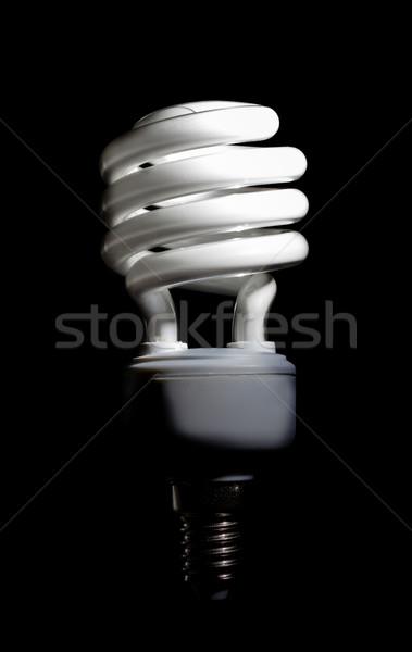 Energia compatto fluorescente lampadina spirale Foto d'archivio © nemalo