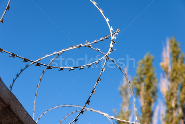 Prikkeldraad blauwe hemel veiligheid hek Blauw industrie Stockfoto © nemalo