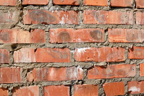 Brick wall Stock photo © nemalo
