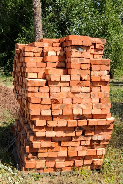Bricks on pallets Stock photo © nemalo