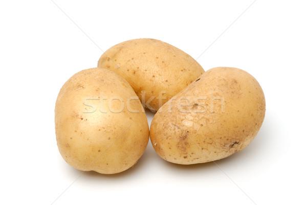Potato Stock photo © nemalo