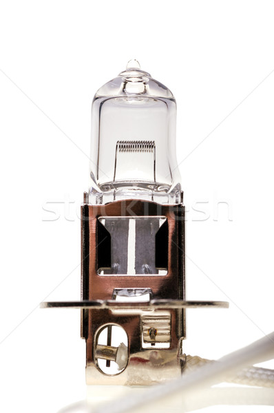 Halojen araba ampul lamba yalıtılmış beyaz Stok fotoğraf © nemalo