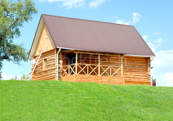 The wooden house Stock photo © nemalo