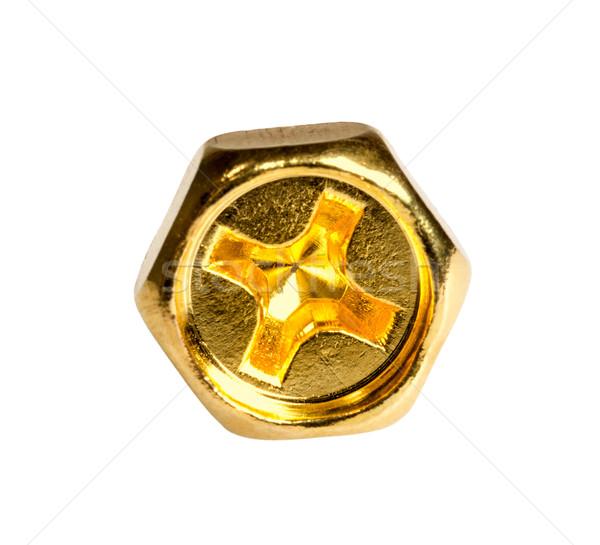 Gold head screw Stock photo © nemalo