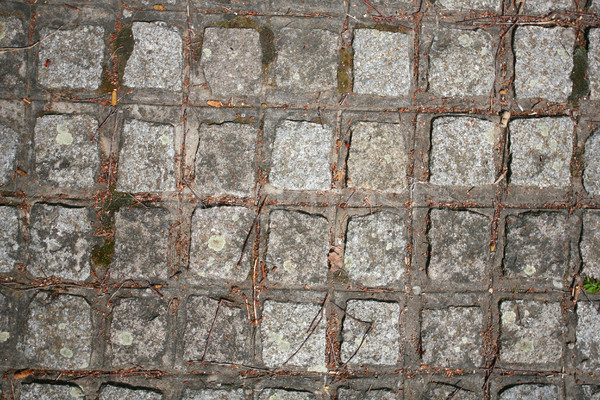 The fragment of a pavement footpath Paving stone with holes Stock photo © nemar974