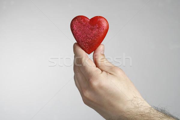 Heart in hand Stock photo © nemar974