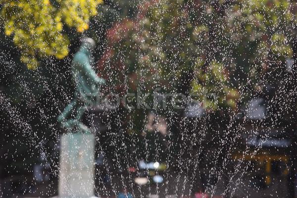 Sıçrama soğutma yaz su ışık yağmur Stok fotoğraf © nemar974