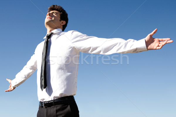 Happy successful business man raised arms with sky in the backgr Stock photo © nenetus