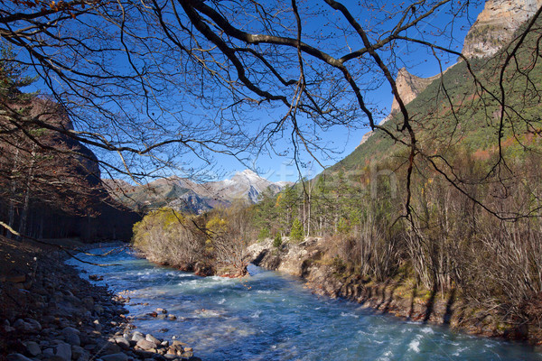 Autumn landscape in Ordesa National Park, Pyrenees, Huesca, Arag Stock photo © nenetus