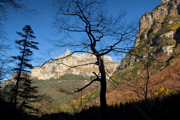 Autumn landscape in Ordesa National Park, Pyrenees, Huesca, Arag Stock photo © nenetus