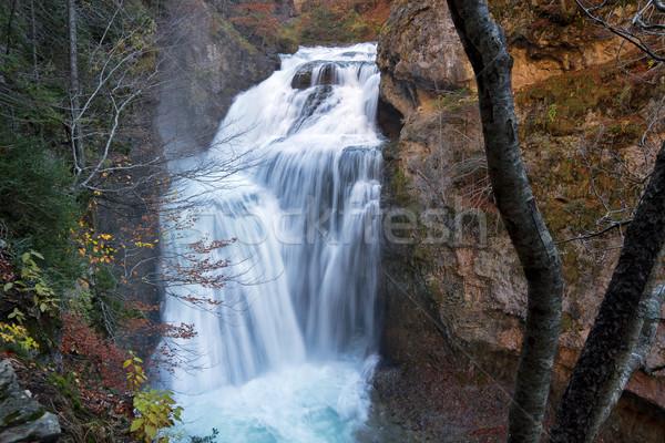 Falls  in Ordesa National Park, Pyrenees, Huesca, Aragon, Spain Stock photo © nenetus