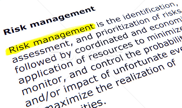 Risk management Stock photo © nenovbrothers