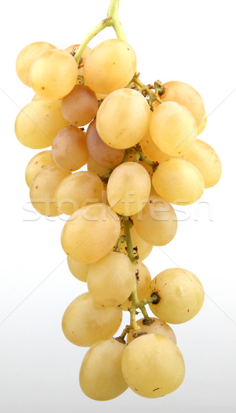 белый винограда зеленый винограда сельского хозяйства свежие Сток-фото © nenovbrothers