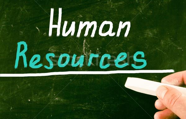 Humanismo recursos trabalhar trabalho sucesso companhia Foto stock © nenovbrothers
