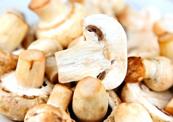 Comestível cogumelo textura primavera madeira natureza Foto stock © nenovbrothers