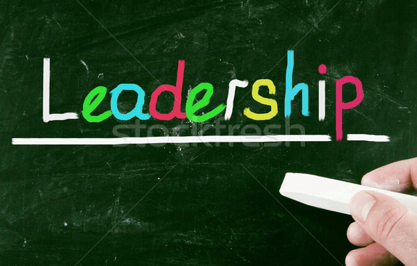 leadership concept Stock photo © nenovbrothers