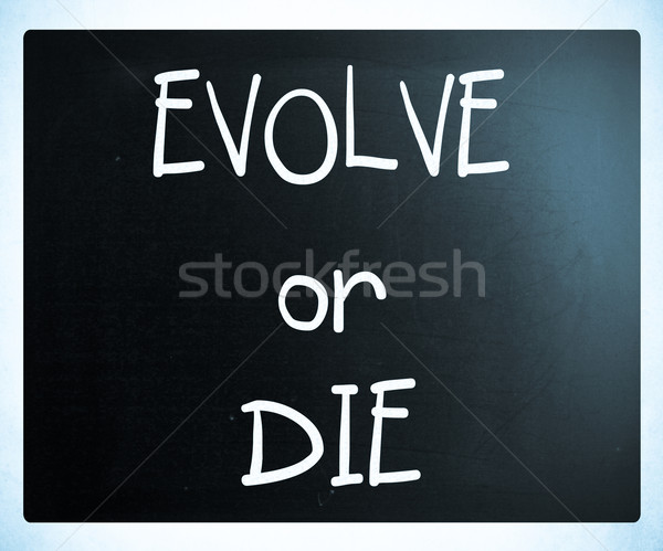 'Evolve or Die' handwritten with white chalk on a blackboard Stock photo © nenovbrothers