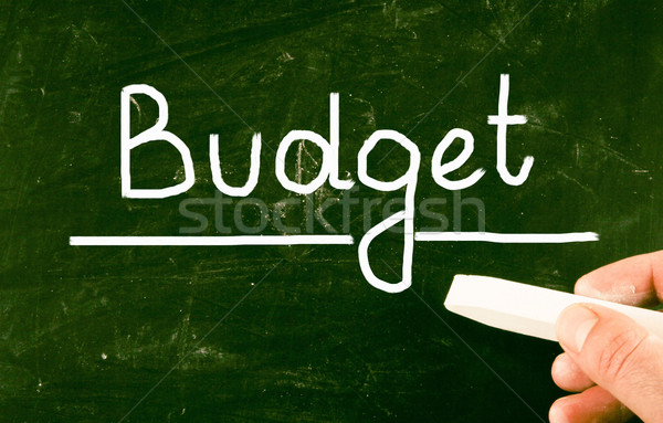 budget concept Stock photo © nenovbrothers