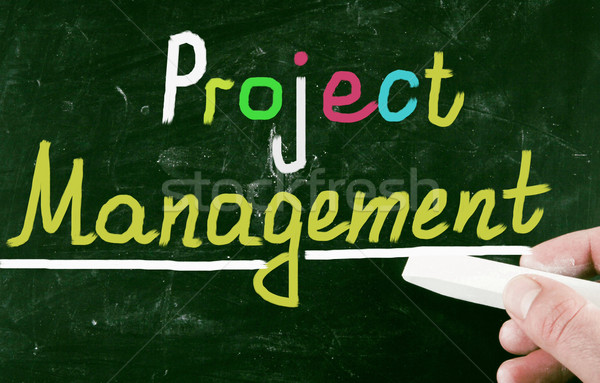 project management Stock photo © nenovbrothers