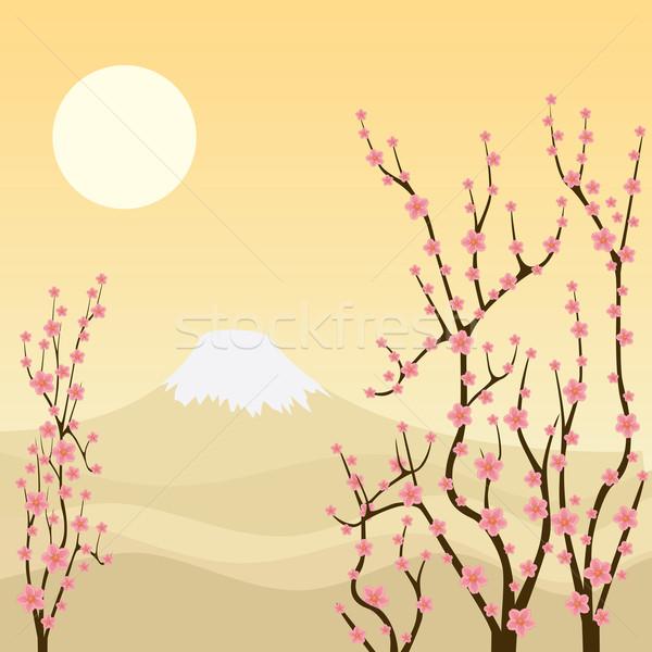 Sakura drzewo ilustracja górskich kwiat Zdjęcia stock © Neokryuger