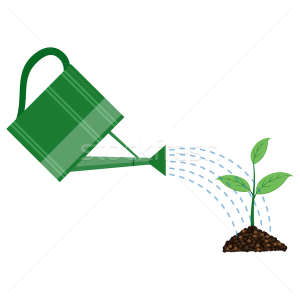 Young plant with watering can Stock photo © Neokryuger