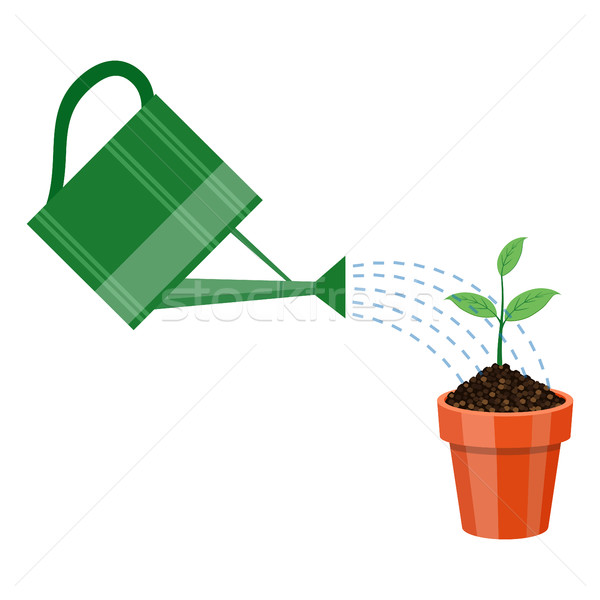 Watering can and plant in the pot. Stock photo © Neokryuger