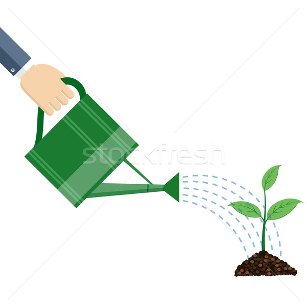 Hand holding watering can watering plant. Stock photo © Neokryuger