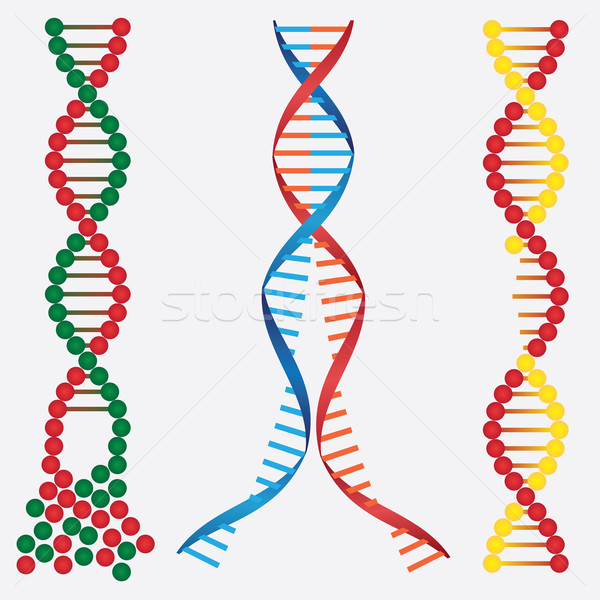 Damaged DNA. Stock photo © Neokryuger