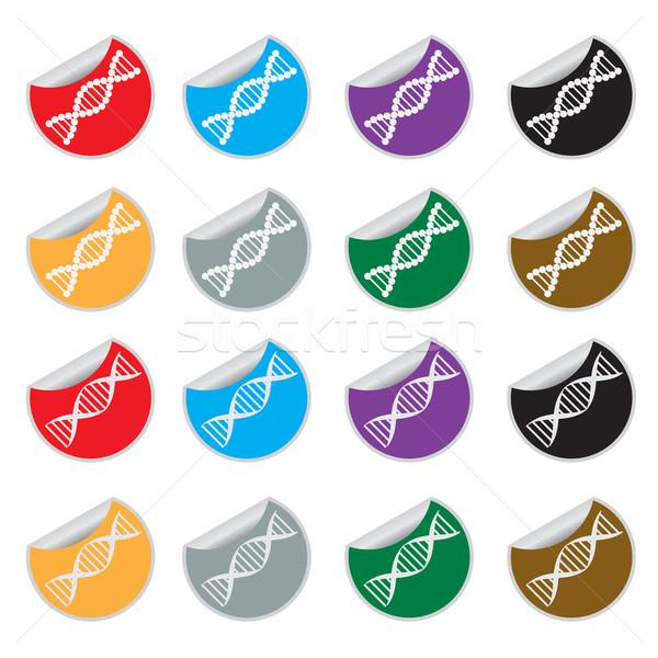 Ingesteld dna gekleurd stickers Stockfoto © Neokryuger