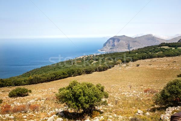 Krajobraz sycylia Włochy piękna lata Zdjęcia stock © NeonShot