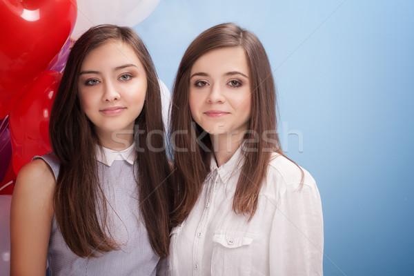 Porträt zwei Schwestern schönen Frau Stock foto © NeonShot