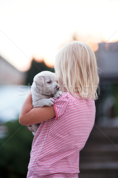 Little girl with dog. Stock photo © NeonShot