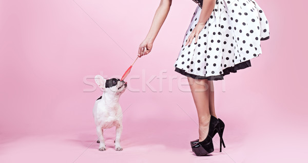 Pinup woman with pug dog. Stock photo © NeonShot