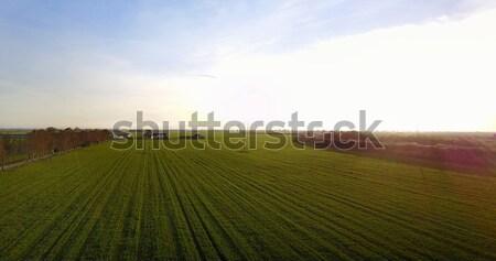 красивой закат пейзаж сельского хозяйства полях антенна Сток-фото © NeonShot