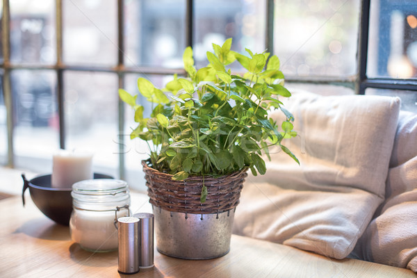 Table with fresh mint in restaurant. Stock photo © NeonShot