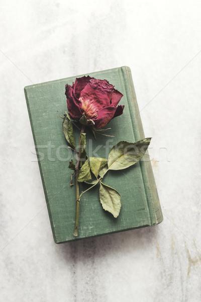 Eski kitap güzel kurutulmuş gül çiçek sevmek Stok fotoğraf © nessokv