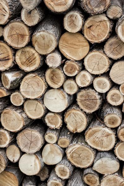 Kıyılmış yakacak odun kuru yukarı Stok fotoğraf © nessokv