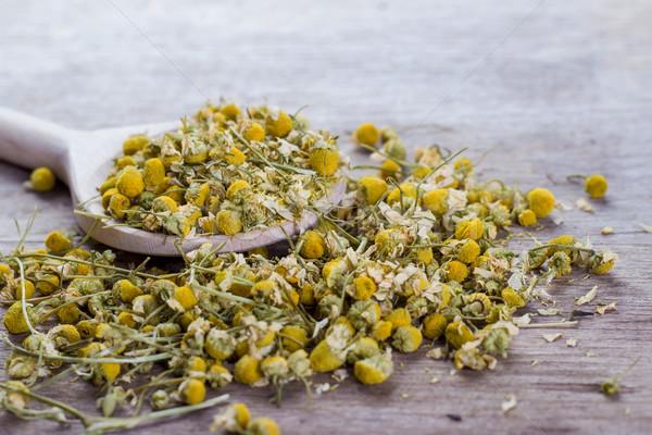 Сток-фото: ромашка · таблице · цветок · древесины · зеленый