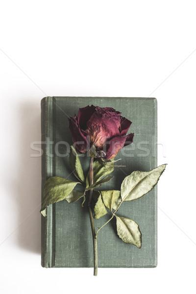 Eski kitap güzel kırmızı kurutulmuş güller beyaz Stok fotoğraf © nessokv