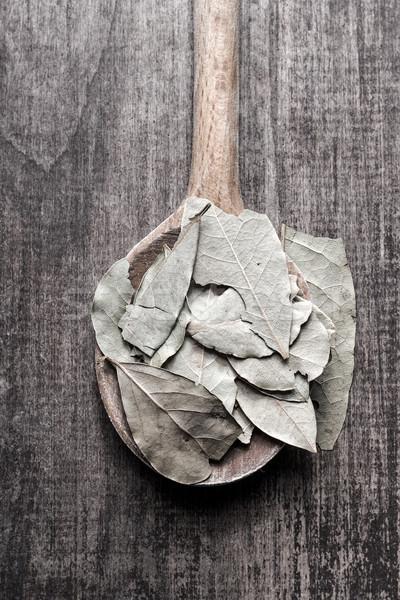 Bay leaves Stock photo © nessokv