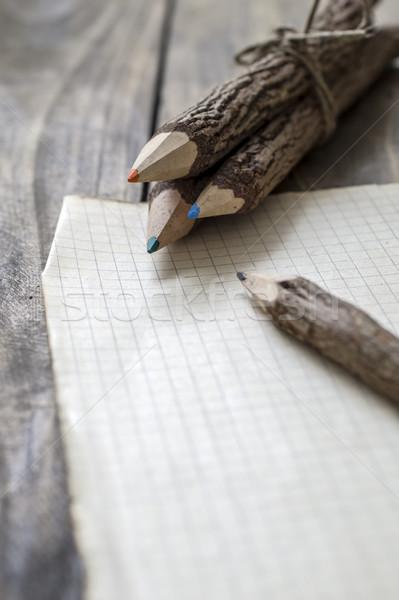 группа Кора покрытый филиала карандашей Сток-фото © nessokv