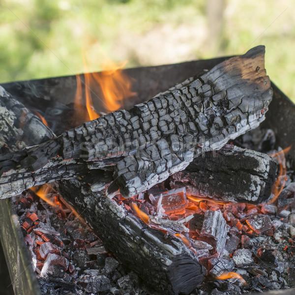 Yakacak odun yanan yangın fotoğraf Stok fotoğraf © nessokv