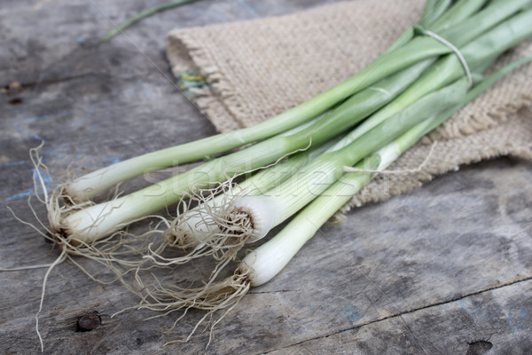 Heap of fresh young onion  Stock photo © nessokv