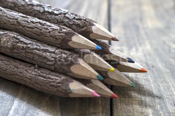 Grupo corteza cubierto rama lápices Foto stock © nessokv