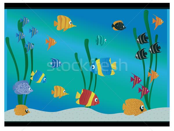 Aquarium poissons eau art orange vie Photo stock © Nevenaoff