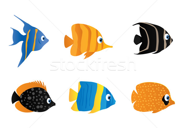 Fish Stock photo © Nevenaoff