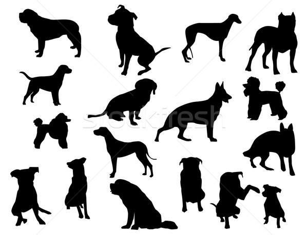 Köpekler siluetleri köpek doğa dizayn imzalamak Stok fotoğraf © Nevenaoff