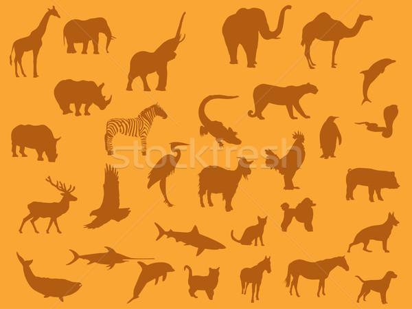 Wild animals Stock photo © Nevenaoff