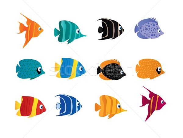 Balık karikatür dizayn komik tropikal mutluluk Stok fotoğraf © Nevenaoff