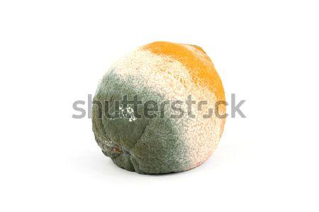 Rot oranje oranje vruchten geïsoleerd zuiver witte Stockfoto © newt96
